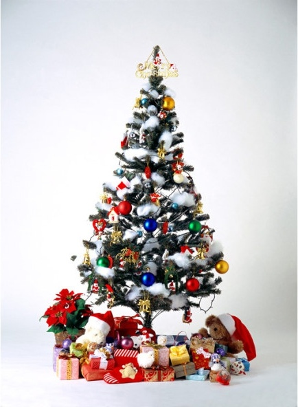 christmas_tree_covered_with_gift_170129